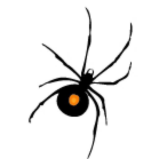 Spyderwebs Barrie