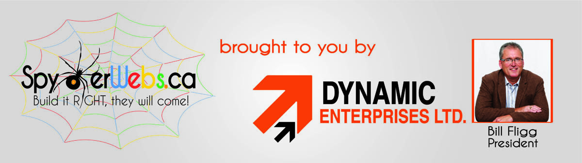 Dynamic-Enterprises-Spyder-Webs-Bill-Fligg-2