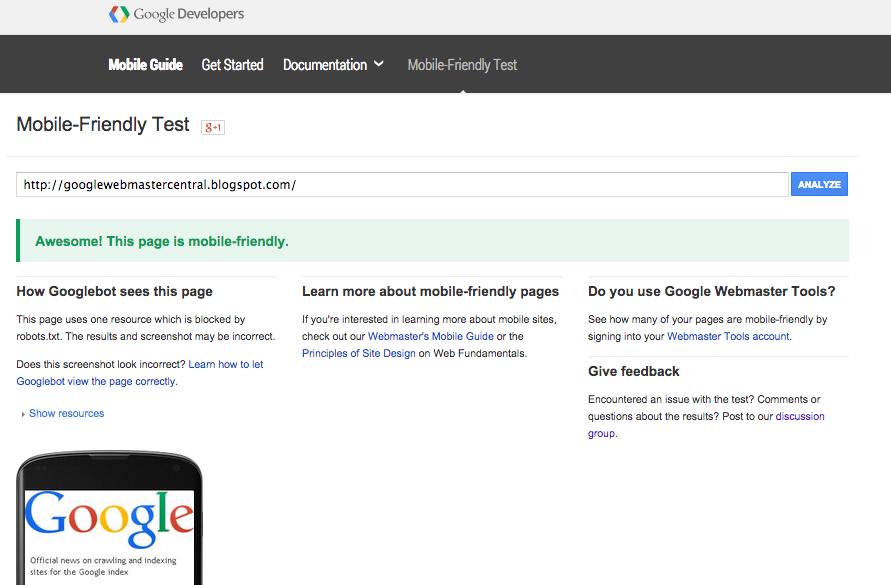 SpyderWebs.ca Google Mobile Website Test 2